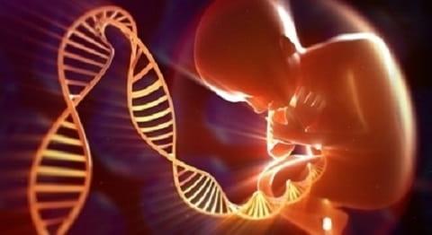 تست آمینوسنتز در بارداری